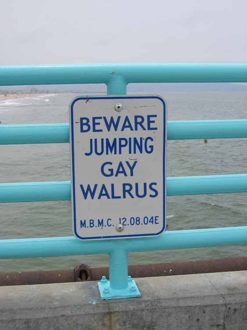 Beware Big Gay Walrus