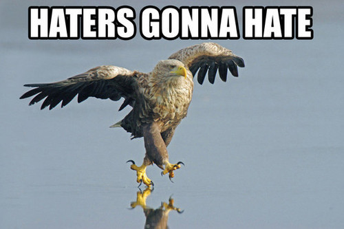 Haters Gonna Hate Eagle