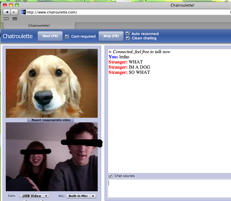 Webcam Chat Im a Dog So What