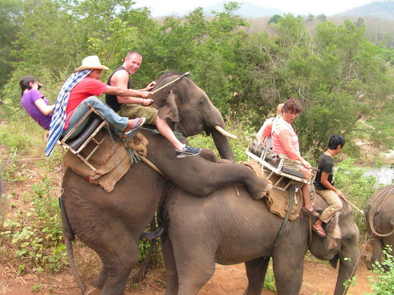 Elephant Ride Goes Wrong