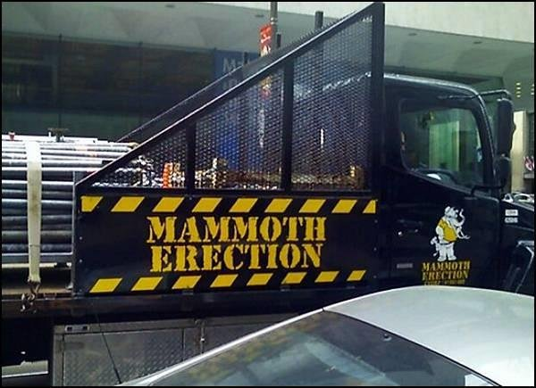 Company Named Mammoth Erection