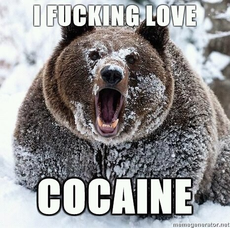 Another Reason To Fear bears Love Cocaine