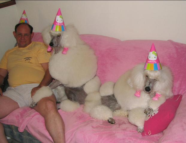 Helluva Party Poodles Weird Guy Party Hats