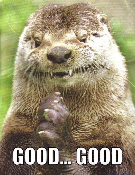 Otter Says Good Good According to Plan
