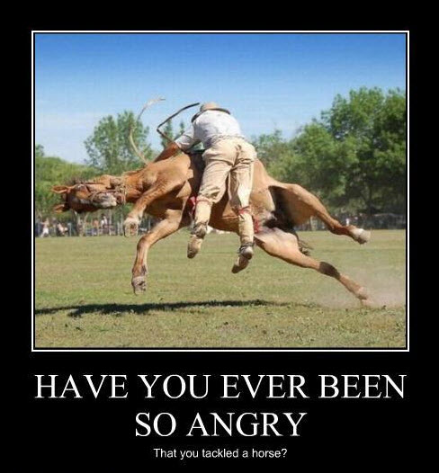 Have You Ever Been So Angry Tackled Horse Motivational