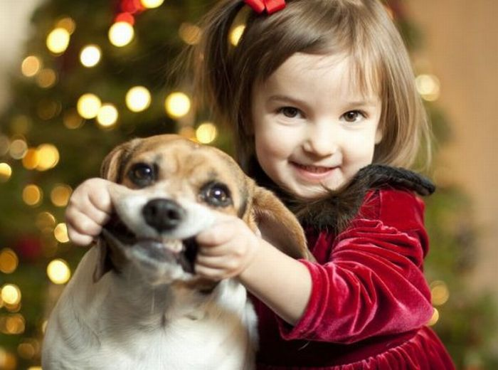 Little Girl Makes Dog Smile for Christmas