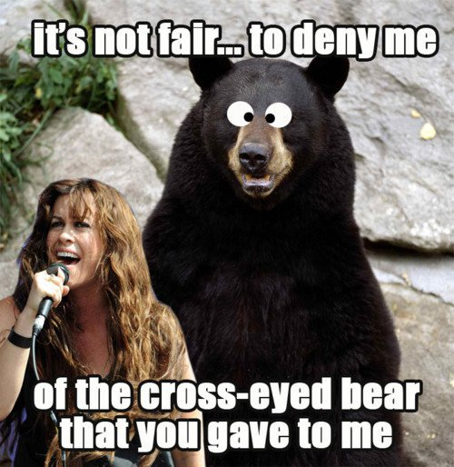 You Oughta Know Cross Eyed Bear That You Gave To Me