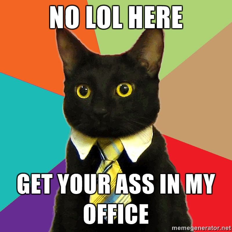 business cat is no joke