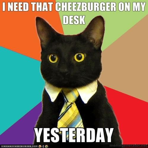 busines kitty needs that cheezburger on his desk yesterday