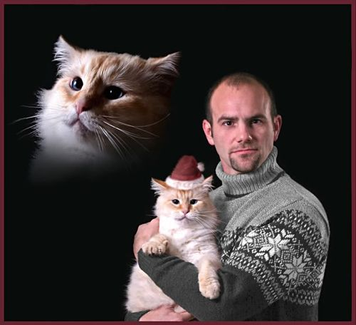 Seasons Greetings Creepy Guy With Cat