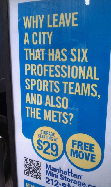six professional sports teams also the mets
